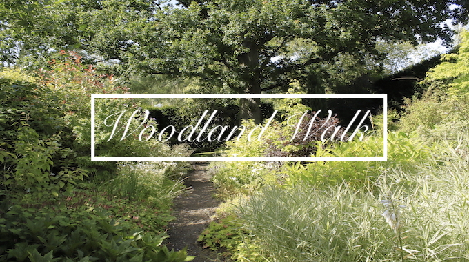 The Woodland Walk at Havoc Hall Oswaldkirk North Yorkshire